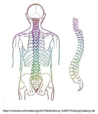 Understanding Subluxation