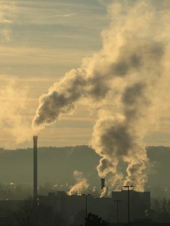 Environmental Toxicity and Detoxification