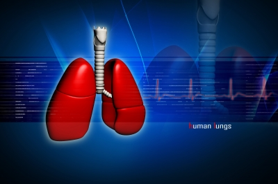 Strong Signs of the Presence of Cystic Fibrosis in The Body