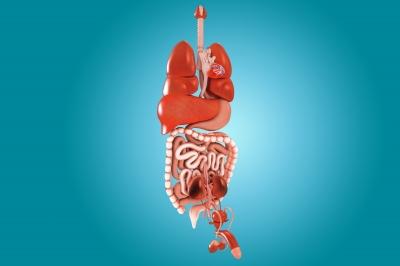 Diverticulitis – An Overview
