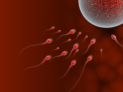 About Male Infertility